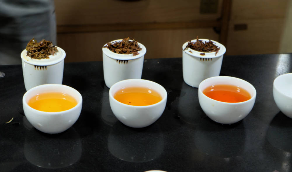 Tea tasting in New Delhi