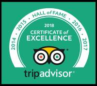 Tripadvisor Hall Of Fame Food Tour In Delhi
